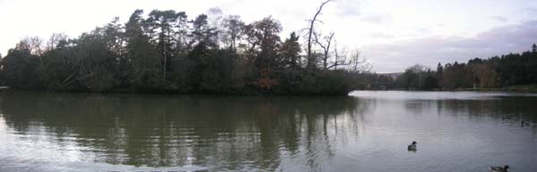 Coarse fishing venues from Fish South East - Lizard Fisheries