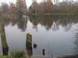 Crawley Angling Society - The Ballast Hole