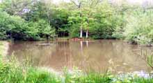 Crowborough & District Anglers Association - Tunnel Lake