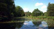 Crowborough & District Anglers Association - Underhill Lake