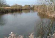 Doe's Angling Club - Beeleigh