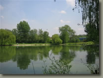 Coarse fishing venues in Hertfordshire - Gaywoods Fishery