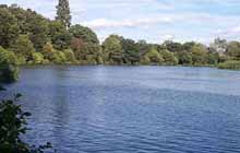 Godalming Angling Society - Broadwater Lake