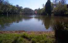 Godalming Angling Society - Busbridge Lake