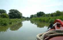 Where to fish in Buckinghamshire? Grand Union Canal - Aylesbury