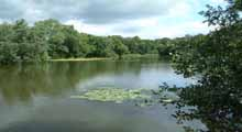 Harrow Angling Society - Rowley Lake