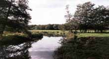 Haywards Heath and District Angling Society