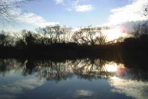Fish South East - Winter at Lizard Fisheries