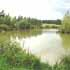 Where to fish in West Sussex. Mill farm fishery
