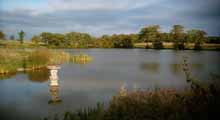 Pulborough Angling Society - Moor Farm