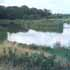 Where to Fish in East Sussex. Sharnfold Farm Fishery
