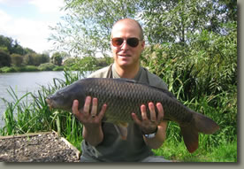 14lb Lizard Common
