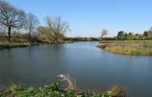 Where to Fish in Surrey? Tandridge Lake