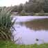 Where to fish in West Sussex. Tanyard Fisheries